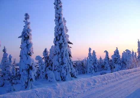 Winter in Suomu